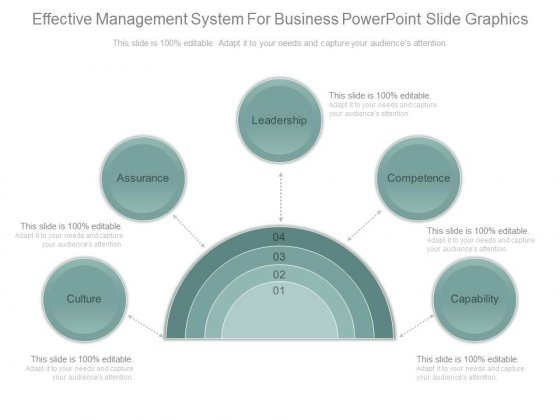 Effective Management System For Business Powerpoint Slide Graphics