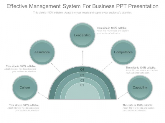 Effective Management System For Business Ppt Presentation