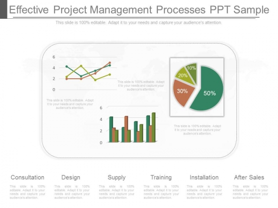 Effective Project Management Processes Ppt Sample