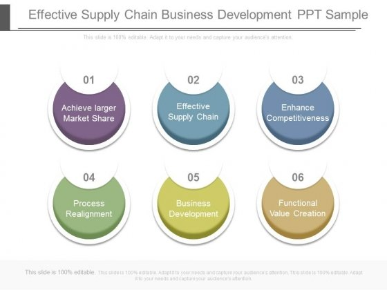 Effective Supply Chain Business Development Ppt Sample