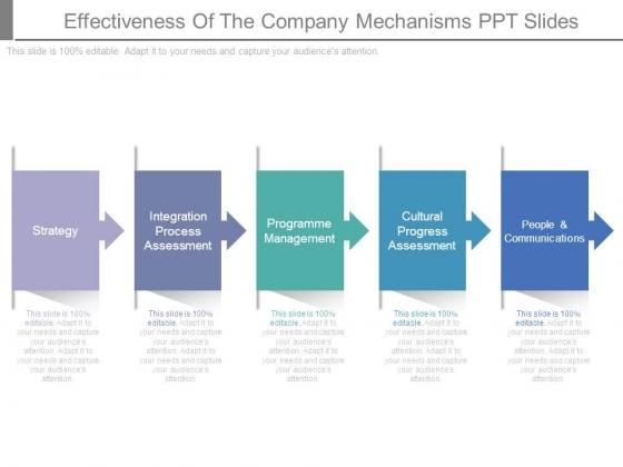 Effectiveness_Of_The_Company_Mechanisms_Ppt_Slides_1