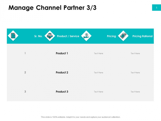 Effectivity Associated To Target Market Manage Channel Partner Service Icons PDF