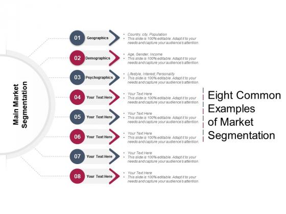 Eight Common Examples Of Market Segmentation Ppt PowerPoint Presentation Layouts Inspiration PDF