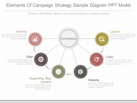 Elements Of Campaign Strategy Sample Diagram Ppt Model