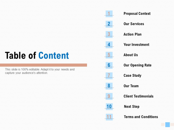 Email Advertising Proposal Table Of Content Ppt Portfolio Format PDF