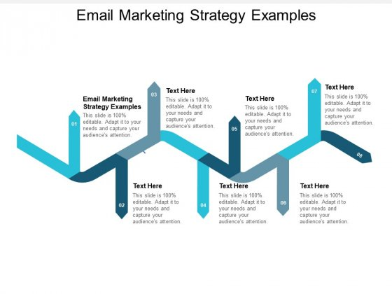 Email Marketing Strategy Examples Ppt PowerPoint Presentation Show Guide Cpb
