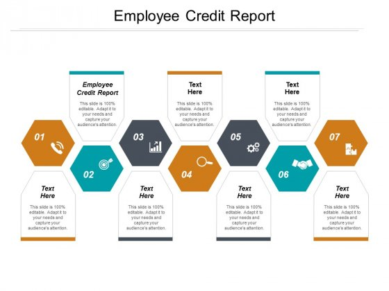Employee Credit Report Ppt PowerPoint Presentation Model Visual Aids Cpb
