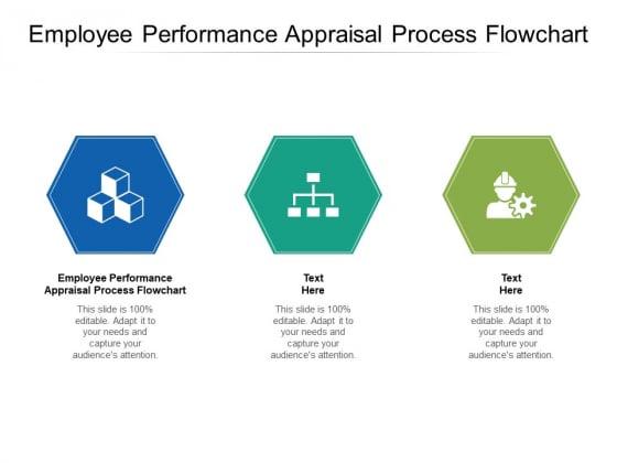 Employee Performance Appraisal Process Flowchart Ppt PowerPoint Presentation Infographics Files Cpb
