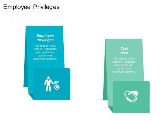 Employee Privileges Ppt PowerPoint Presentation Slides Styles Cpb