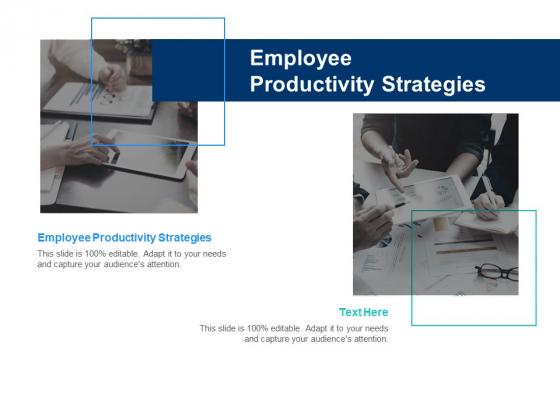 Employee Productivity Strategies Ppt PowerPoint Presentation Inspiration Graphics Design Cpb