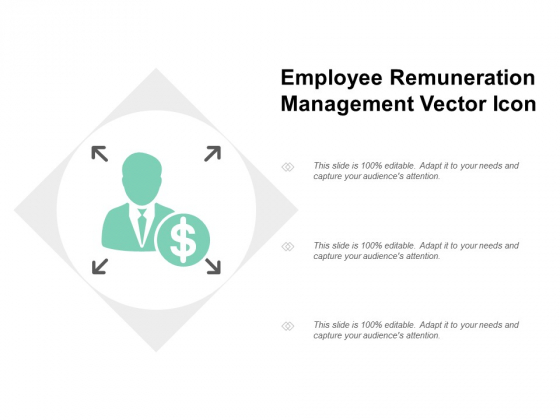 Employee Remuneration Management Vector Icon Ppt PowerPoint Presentation Pictures Example