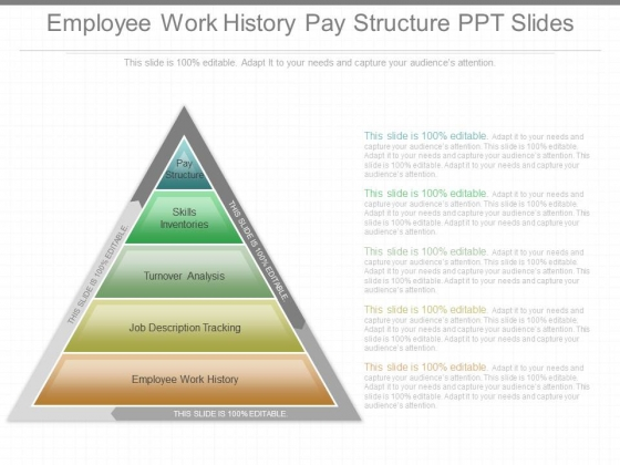 Employee Work History Pay Structure Ppt Slides