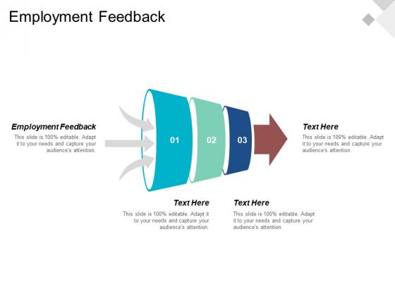 Employment Feedback Ppt PowerPoint Presentation Professional Portfolio