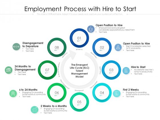Employment Process With Hire To Start Ppt PowerPoint Presentation File Background Images PDF