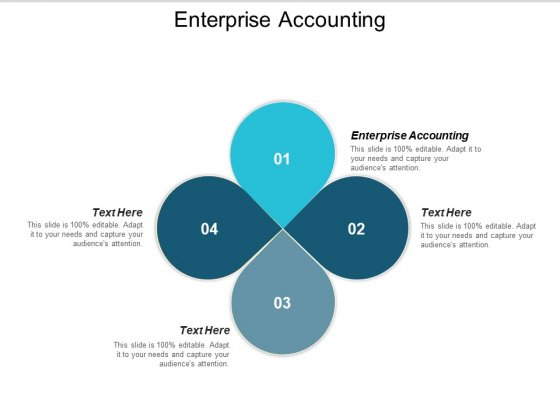 Enterprise Accounting Ppt PowerPoint Presentation Portfolio Guidelines Cpb
