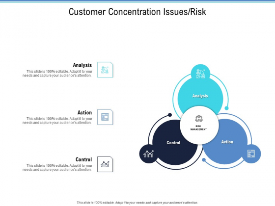 Enterprise Analysis Customer Concentration Issues Risk Graphics PDF