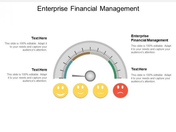 Enterprise Financial Management Ppt PowerPoint Presentation Tips Cpb
