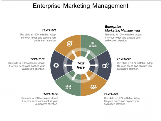 Enterprise Marketing Management Ppt PowerPoint Presentation Show Background Designs Cpb