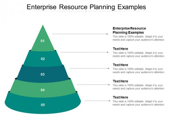Enterprise Resource Planning Examples Ppt PowerPoint Presentation Gallery Topics Cpb