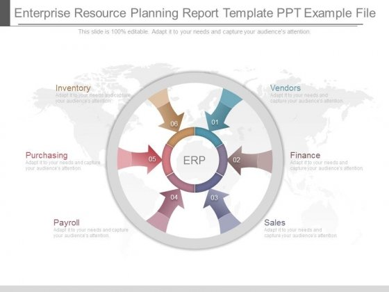 Enterprise Resource Planning Report Template Ppt Example File