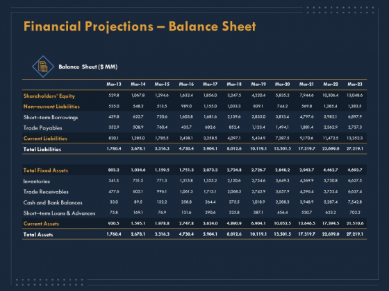 Enterprise Review Financial Projections Balance Sheet Ppt File Infographics PDF