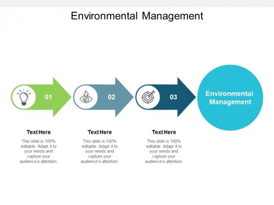Environmental Management Ppt PowerPoint Presentation Professional Themes Cpb