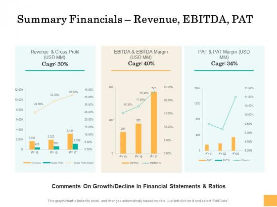 Equity Capital Funding Summary Financials Revenue Ebitda Pat Ppt Portfolio Guide PDF