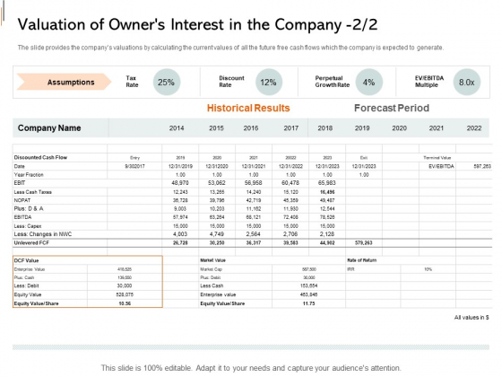 Equity Crowd Investing Valuation Of Owners Interest In The Company Assumptions Demonstration PDF