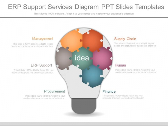 Erp Support Services Diagram Ppt Slides Templates