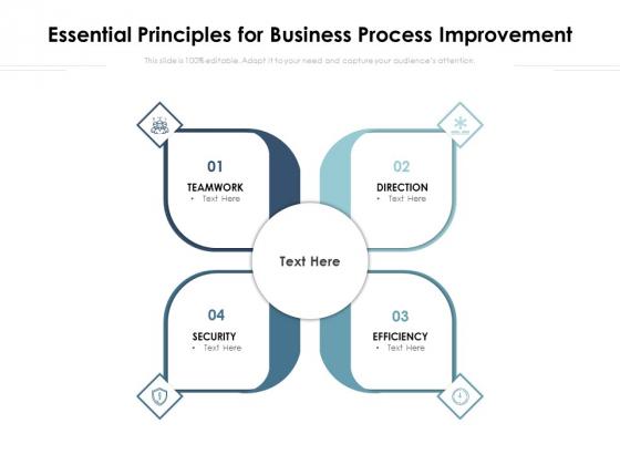 Essential Principles For Business Process Improvement Ppt PowerPoint Presentation Outline Format Ideas PDF