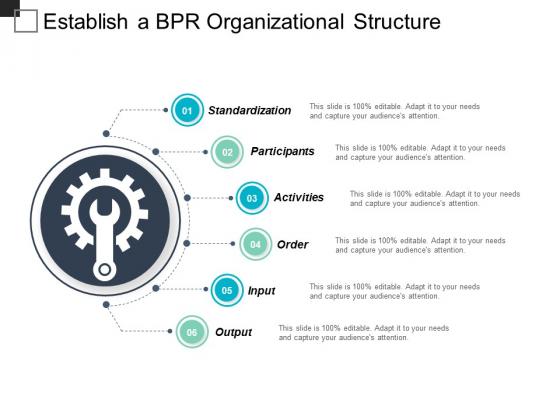 Establish A Bpr Organizational Structure Ppt Powerpoint Presentation Ideas Shapes