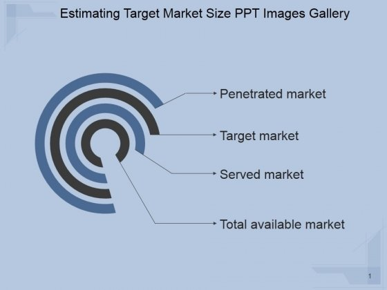 Estimating Target Market Size Ppt PowerPoint Presentation Layout