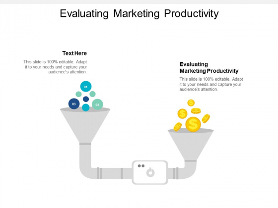 Evaluating Marketing Productivity Ppt PowerPoint Presentation Professional Outline Cpb