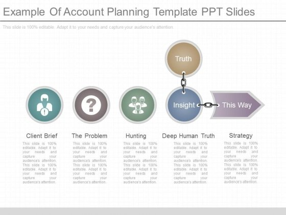 Example Of Account Planning Template Ppt Slides