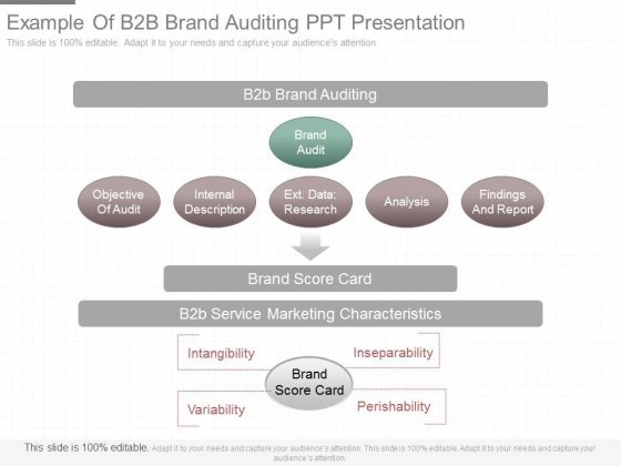 Example Of B2b Brand Auditing Ppt Presentation