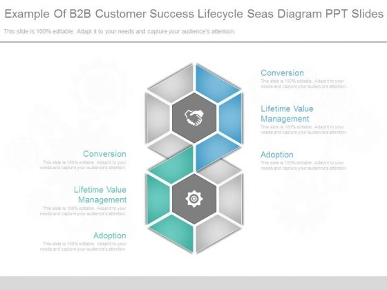 Example Of B2b Customer Success Lifecycle Seas Diagram Ppt Slides