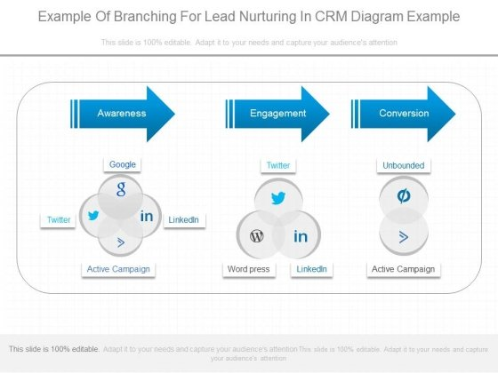 Example Of Branching For Lead Nurturing In Crm Diagram Example