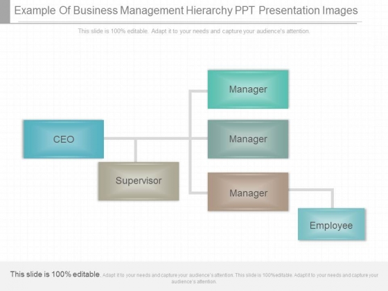 Example Of Business Management Hierarchy Ppt Presentation Images