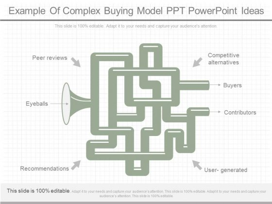 Example Of Complex Buying Model Ppt Powerpoint Ideas