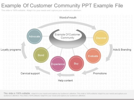 Example Of Customer Community Ppt Example File