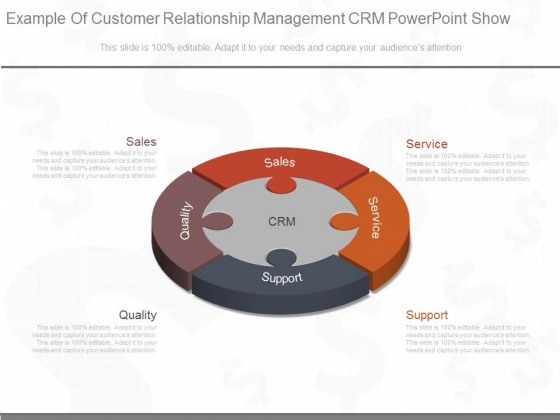 Example_Of_Customer_Relationship_Management_Crm_Powerpoint_Show_1