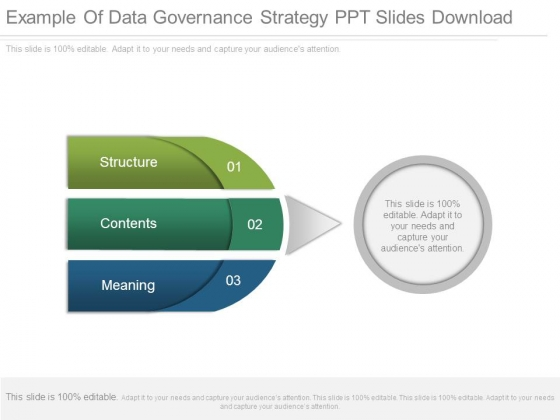 Example Of Data Governance Strategy Ppt Slides Download