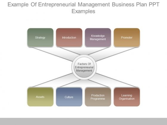 Example Of Entrepreneurial Management Business Plan Ppt Examples