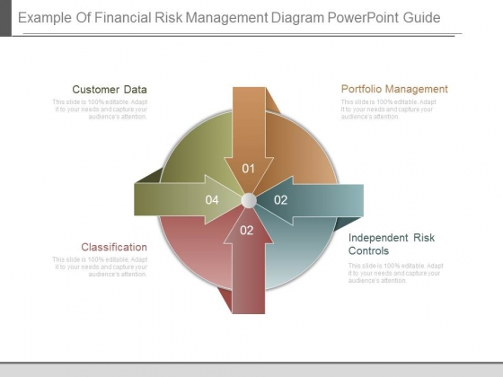 Example Of Financial Risk Management Diagram Powerpoint Guide