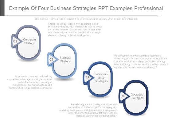 Example Of Four Business Strategies Ppt Examples Professional