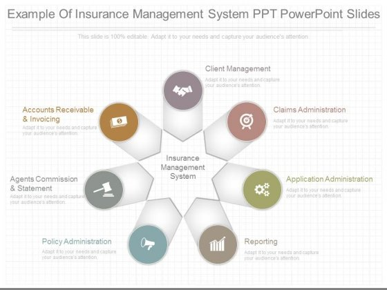 Example Of Insurance Management System Ppt Powerpoint Slides