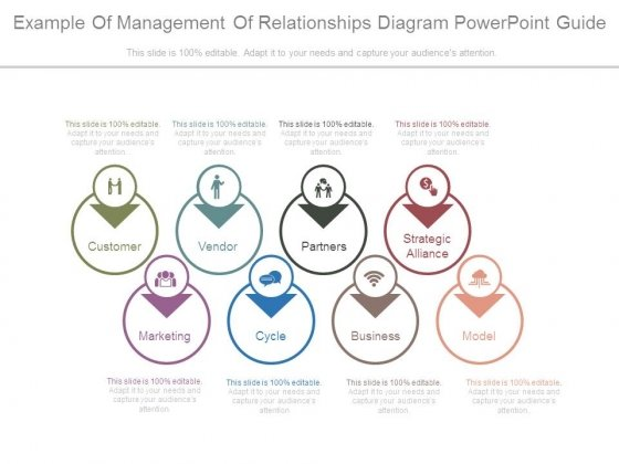 Example Of Management Of Relationships Diagram Powerpoint Guide