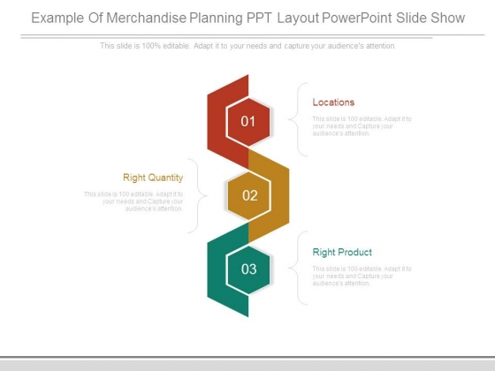 Example Of Merchandise Planning Ppt Layout Powerpoint Slide Show