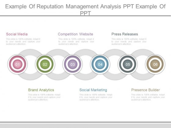 Example Of Reputation Management Analysis Ppt Example Of Ppt