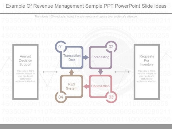 Example Of Revenue Management Sample Ppt Powerpoint Slide Ideas